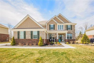 Canton Single Family Home For Sale: 1251 S Hickory Ridge Ct