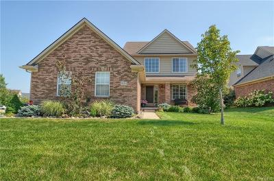 Northville Single Family Home For Sale: 50341 Mulberry Crt