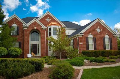 Canton Single Family Home For Sale: 48462 Manhattan Cir