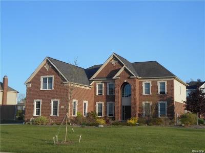 Oakland Twp Single Family Home For Sale: 3777 S Century Oak Cir