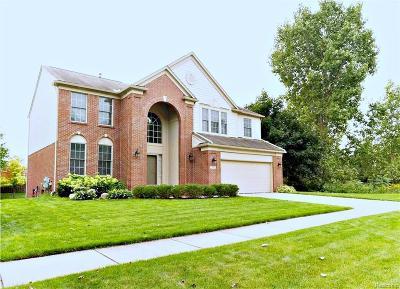 Rochester Hills Single Family Home For Sale: 488 Bedlington Dr
