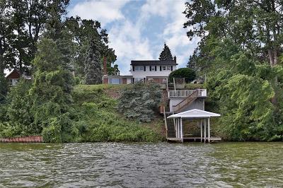 Belleville Single Family Home For Sale: 48500 Ormond Dr