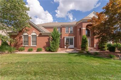 Northville Single Family Home For Sale: 17186 Orchard Ridge