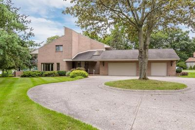 Belleville Single Family Home For Sale: 43303 S Interstate 94 Service Dr