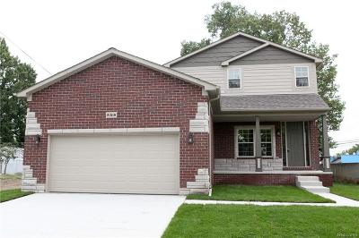 Saint Clair Shores Single Family Home For Sale: 21518 Grand Lake St