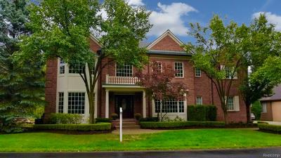 Lake Orion Single Family Home For Sale: 83 Greenan Ln