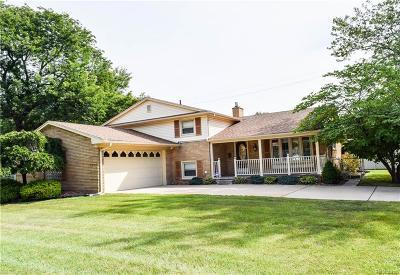 Allen Park Single Family Home For Sale: 10787 Seavitt Drive Dr