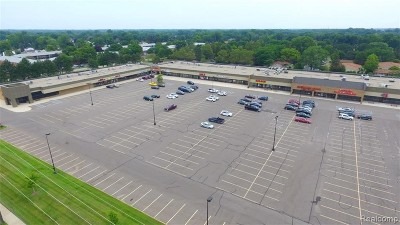 Commercial Lease For Lease: 37808 Van Dyke Ave