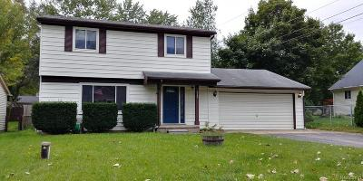 Clarkston Single Family Home For Sale: 4749 Meadowbrook