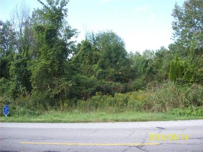 Residential Lots & Land For Sale: 2783 Belle River Rd.