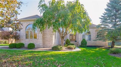 Canton Single Family Home For Sale: 7296 Lyndhurst