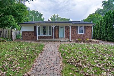 Farmington Hills Single Family Home For Sale: 34835 Bridgeman St