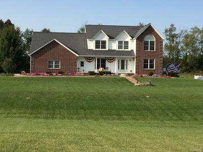 Lapeer Single Family Home For Sale: 6075 Sunnys Way Way