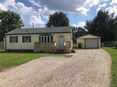 Belleville Single Family Home For Sale: 46115 Judd Rd