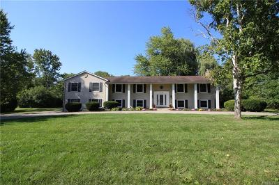 Bloomfield Hills Single Family Home For Sale: 3380 Chickering Ln