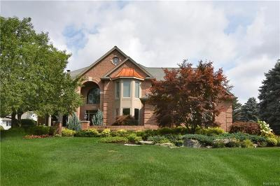 Rochester Hills Single Family Home For Sale: 2526 Golf Crest Dr