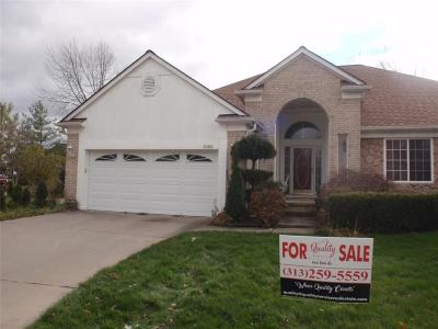 Southfield Single Family Home For Sale: 28363 Lady K Crt
