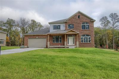 Northville Single Family Home For Sale: 16580 Franklin Rd