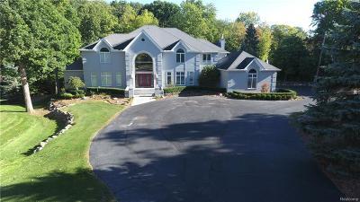 Bloomfield Hills Single Family Home For Sale: 7515 Hiddenbrook Ln