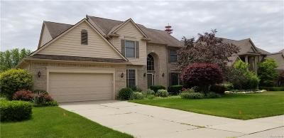 Plymouth Single Family Home For Sale: 51245 W Hills Dr