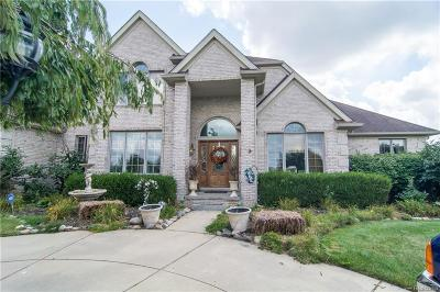 Northville Single Family Home For Sale: 16672 Victoria Crt