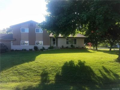 West Bloomfield Single Family Home For Sale: 7420 Coach Ln