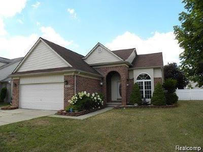 Westland Single Family Home For Sale: 266 Stephanie Dr