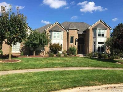 Shelby Twp Single Family Home For Sale: 53762 Briarcliff Crt