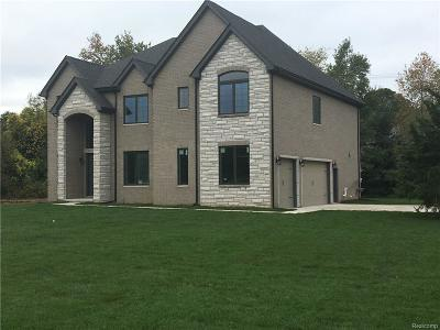 Bloomfield Hills Single Family Home For Sale: 1410 E Square Lake Rd