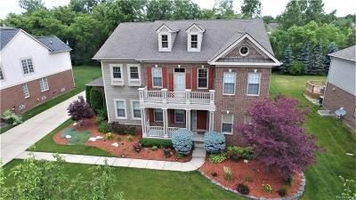 Canton Single Family Home For Sale: 49056 Founders Crt