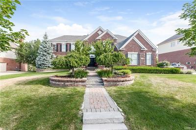 Northville Single Family Home For Sale: 46438 Pinehurst