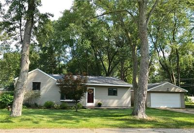 West Bloomfield Single Family Home For Sale: 4271 Maple Blvd