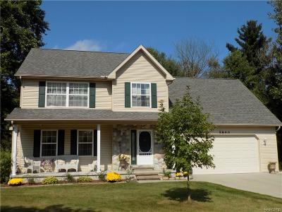 Smiths Creek Single Family Home For Sale: 5840 Anna Dr