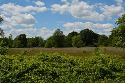 Macomb MI Residential Lots & Land For Sale: $104,900