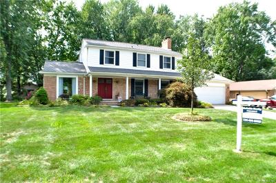 Shelby Twp Single Family Home For Sale: 53733 Luann Dr