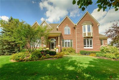 Canton Single Family Home For Sale: 2075 Tradition Dr