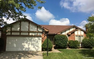 Sterling Heights Single Family Home For Sale: 3611 Alderdale