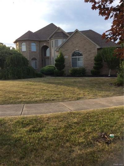Canton Single Family Home For Sale: 47051 Hidden River Cir N