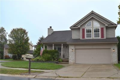 Lake Orion Single Family Home For Sale: 3043 Talon Cir