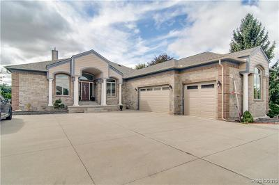 Macomb Single Family Home For Sale: 13790 Patterson Dr
