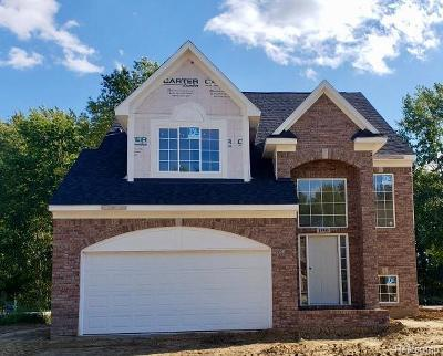 Shelby Twp Single Family Home For Sale: 13900 Grandeur Ave