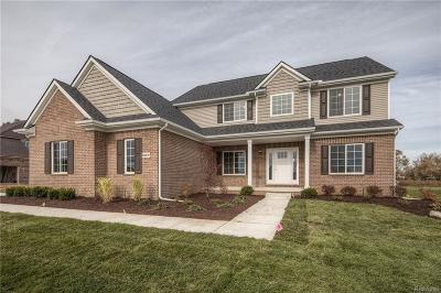 Canton Single Family Home For Sale: 50476 Proctor
