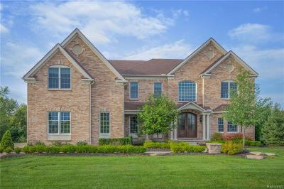 Northville Single Family Home For Sale: 50687 Northstar Way