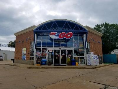 New Baltimore Commercial/Industrial For Sale: 35512 23 Mile Rd