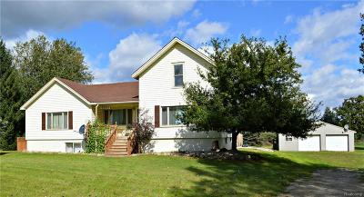 Lapeer Single Family Home For Sale: 6893 Webster Rd
