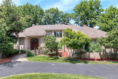 Bloomfield Hills Single Family Home For Sale: 362 Sycamore Crt