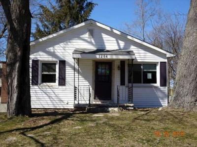 Bloomfield Hills Single Family Home For Sale: 1284 Atkinson Ave
