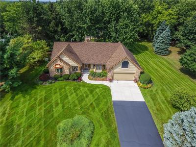Lapeer Single Family Home For Sale: 3844 Winding Pine Dr