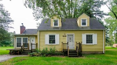 Belleville Single Family Home For Sale: 47195 Ayres Ave