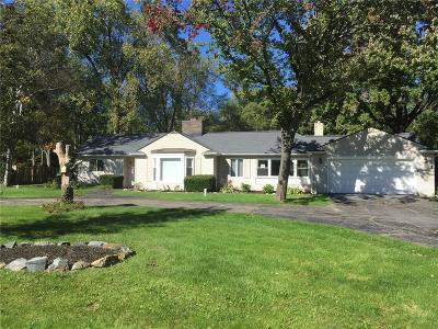 Farmington Hills Single Family Home For Sale: 29204 Utley Rd